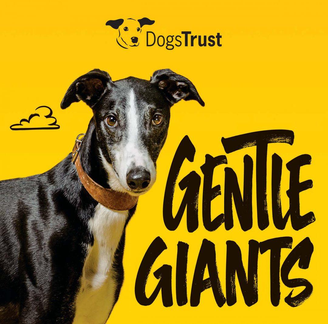 Dogs Trust – Online HPTO